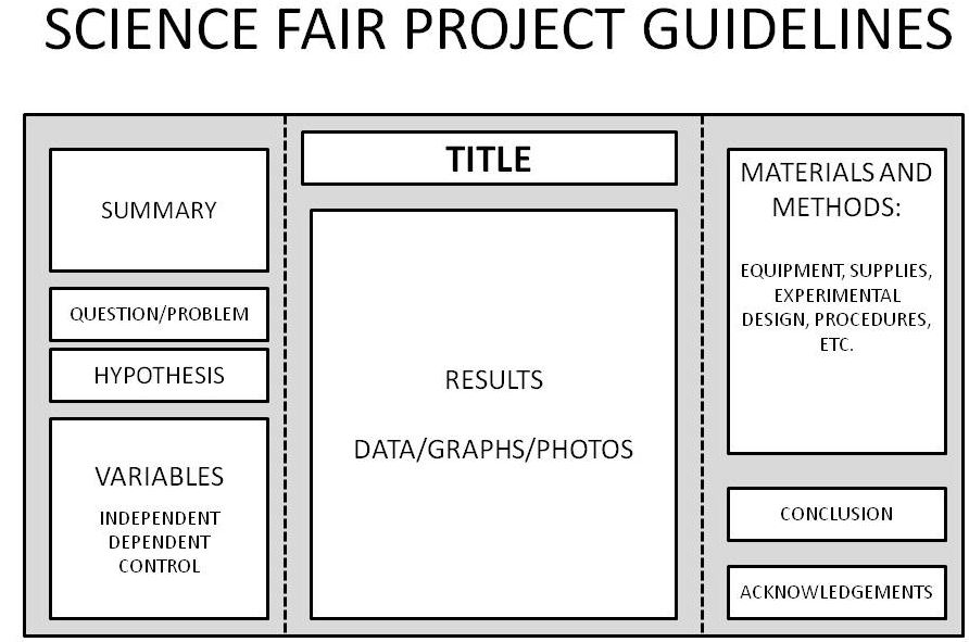 Image result for science fair display board guidelines